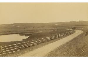 View of Polpis Road looking east, 1902.