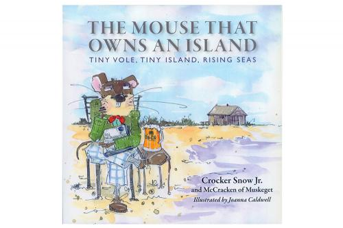 The Mouse That Owns an Island
