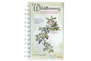 Wildflowers of Nantucket
