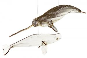 Narwhal and Beluga Whale Mobile